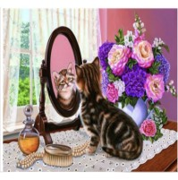 Diamond Painting  gatto allo specchio 30X40cm