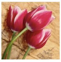 Diamond Painting tulipano 20x20 con telaio