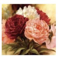 Diamond Painting rose 20x20 cm con telaio